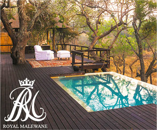 Private Pool at Royal Malewane Safari Lodge
